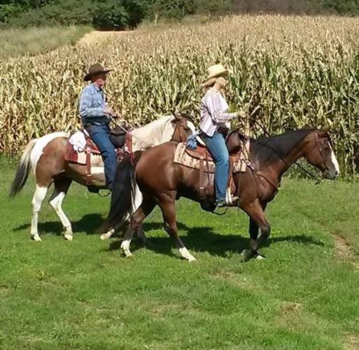 Brent and Nancy Berry back in saddle.